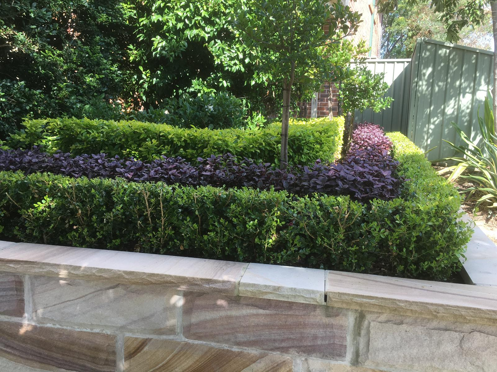 Retaining wall with trimmed and sculpted hedges within it